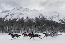 Wyścigi konne nad jeziorem St. Moritz.