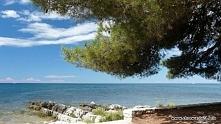 Adriatyk i piękne wybrzeże Chorwacji.
