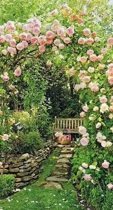 Piękny, magiczny ogród :)