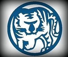 We wschodniej kulturze Tygrys jest symbolem szczęścia i siły. Należy do osób ...