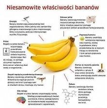 Banan - właściwości
