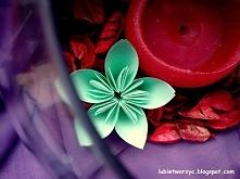Piękny kwiat kusudama