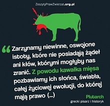 Plutarch Grafika: zeszytyprawzwierzat.org.pl
