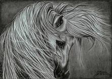 rzadko rysuje konie, ale dla tego zrobiłam wyjątek;)