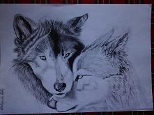 Oto Wilczki mojego wykonania :) Format A4, ołówek, czas pracy ok. 11h :) Więc...