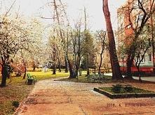 Kraków Rakowice