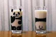 szklanka panda