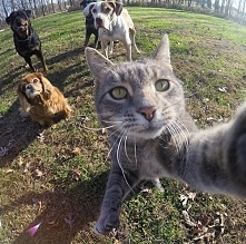 No to.. selfie chłopaki :D