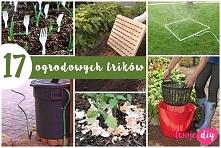 17 ogrodowych trików - twoj...