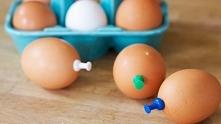 W surowe jajka wbiła biurow...