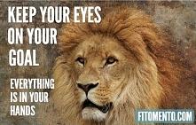 Wyznacz cel i każdego dnia ...