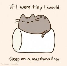 Fajnie czasami pospać na piance,  2nd Conditional ;)