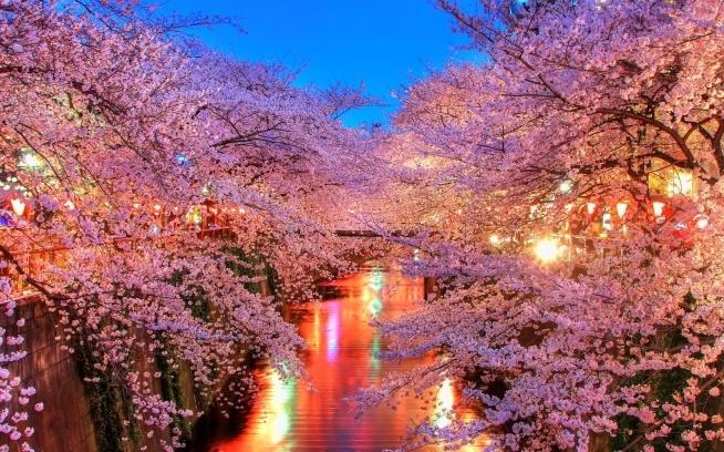 Cudo :* Japońska dzielnica <3 genialne moim zdaniem ;)