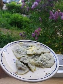 wiosenne pierożki ze świeżym szpinakiem   PRZEPIS NA CIASTO: °szklanka mąki °1/3 szklanki ciepłej wody °szczypta soli  Składniki na ciasto mieszamy (najlepiej robotem kuchennym)...