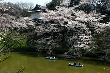 Japonia, piękne miejsce :3