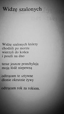 Tadeusz Różewicz. Widzę sza...