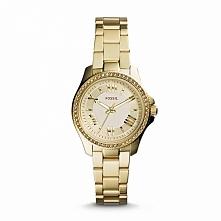 Zegarek damski wodoodporny Fossil AM4577  Możliwość zakupu, link w komentarzu :)