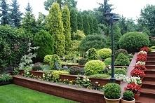 Piękny ogród działkowy :)