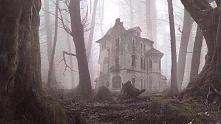 Opuszczony dom w lesie.