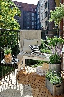 mały balkonowy ogród