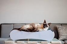 Drapak dla kota Catphil.pl