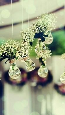 białe kwiatki są takie urocze