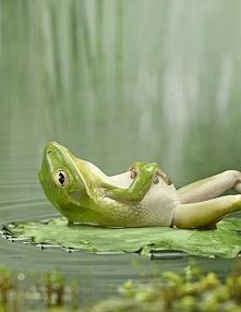 cudownie odpocząć