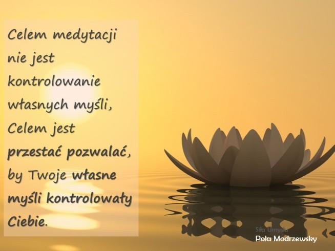 Celem medytacji nie jestkontrolowanie własnych myśli, Celem jest przestać pozwalać,  by Twoje własne myśli kontrolowały Ciebie.