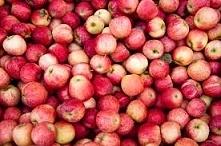 Z ususzonych skorek od jabłek można zaparzyć doskonałą owocowa herbatę.