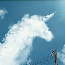 Unicorn ^.^