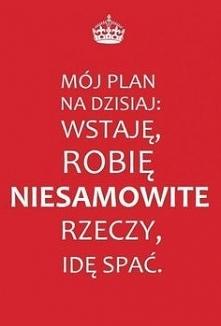 Idealny plan dnia...