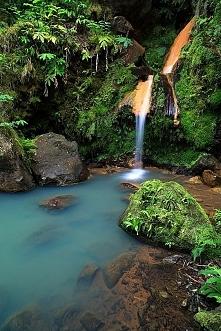 Sao Miguel - Azores Islands...