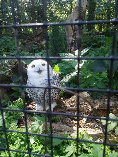 <3 zoo Opole