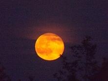 To uczucie kiedy jesteś przekonany, że to jakiś dziwny Księżyc...a okazuje się, że to Mars...