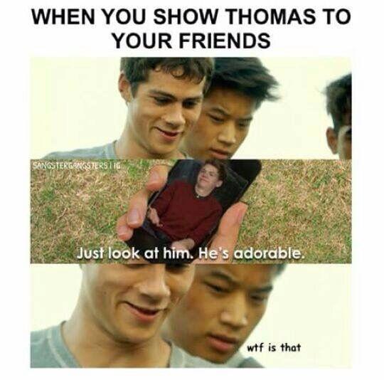 Hahaha XD
