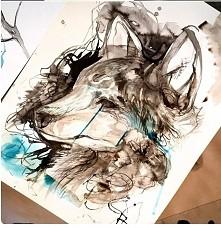 wilk jak malowany ;)