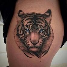 a może tygrys?