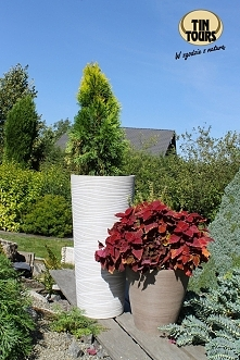 Donice z materiałów recyklingowych mogą stać w ogrodzie cały rok - i w lecie, i w zimie.
