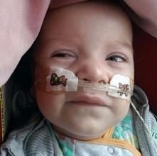 Pomoc dla małego Teosia