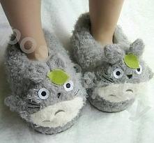 Totoro :D