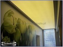 nowoczesny korytarz - koryt...