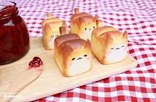Chlebki koty :D