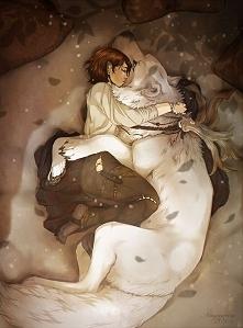 przyjażń wilk