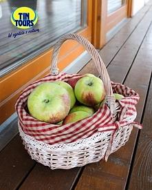 Kosz wiklinowy z uroczym wyszyciem pełen soczystych i pachnących polskich jabłek.