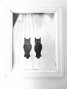 Czarne koty.