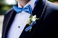 motyw niebieski - muszka i butonierka