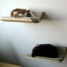 Można zrobić samodzielnie. Pomysłowe i pożyteczne. + Fajnie wygląda a kot ma trochę spokoju.