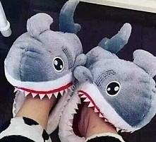 rekiny nie wszystkie są takie straszne xd