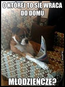 #humor, #memy, #śmieszne, #zabawne, #demotywatory, #obrazki