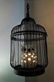 Sowa w klatce :] super pomysł na lampion, sama mam podobną na szafce nocnej.